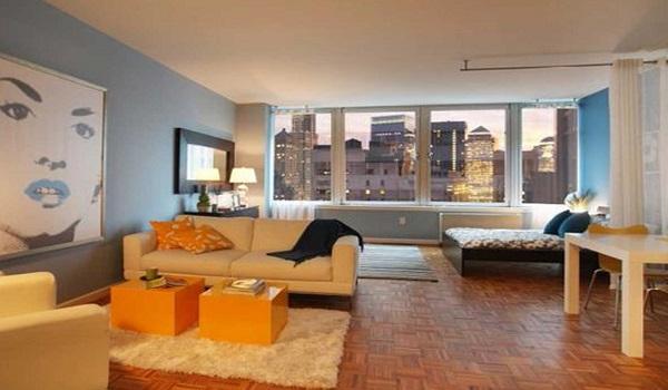 Wall-picture-design-studio-apartment-decorating-tips-pics23